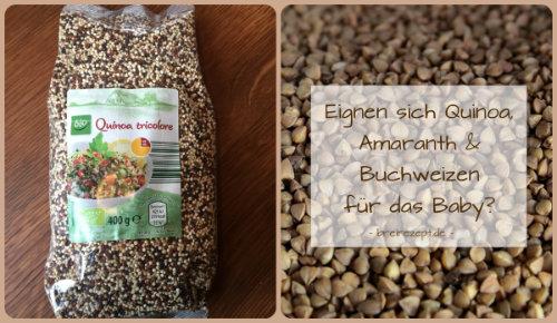 Quinoa, Amaranth und Buchweizen für den Babybrei?